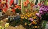 Medzinárodná výstava kvetov FLORA OLOMOUC