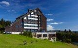 Orea Wellness Hotel Horizont