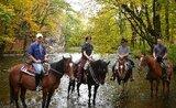 Putování na koních podhůřím Orlických hor