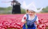 Velikonoční Holandsko - květin a větrných mlýnů