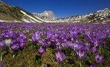 To nejlepší z Říma + národní park italského Tibetu