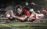 Ms Rugby 2019 Anglie - Argentina & Nový Zéland - Namíbie