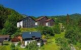 Alpenhotel Dachstein S Bazénem – Bad Goisern Léto, Karta
