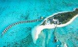 Hotelový komplex Cocoon Maldives