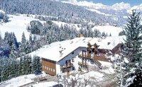 Hotel Debra Park - Itálie, Passo San Pellegrino,