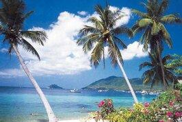 Aloha Resort - Thajsko, Lamai Beach,