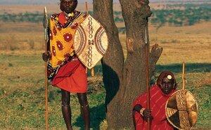 Diamonds Dream of Africa