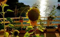 krásný výhled Sidari Korfu