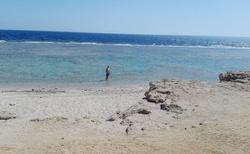 Moře s korálovým podložím