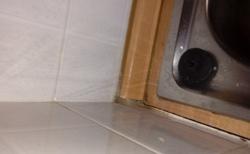 Plesen na kuchynskom drese