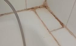 plísen ve vaně
