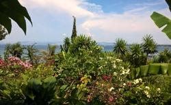 Botanická zahrada na cestě z lodního výletu