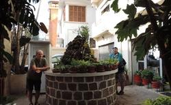 Dvorní zahrada u hotelu