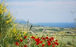Ouranoupoli za hradnou květin