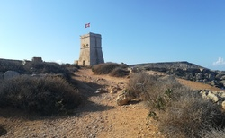 Torri ta' Għajn Tuffieħa
