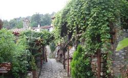 Zelená ulička