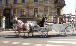 Krakov - Koňský kočár pod Wawelem