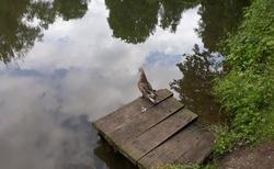 Vizovice - Zámecký park