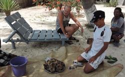 Ifaty - Villa Maroloko - konzumace mořských ježků