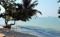 Houpačky na palmě uvidíte na pláži velice často.