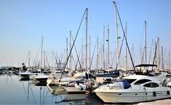 Pristav Larnaka