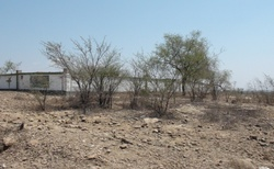 Hrobky mezi Sakaraha a Toliara