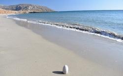 Oblíbená pláž