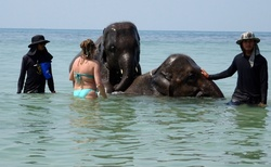 Koupání se slony, nejlepší způsob setkání se slony