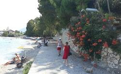 Ligia Beach
