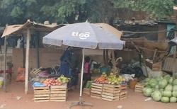 prodej ovoce