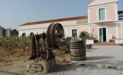 Rhodos - Vinařství a olivovnictví Anastasia Triantafyllou