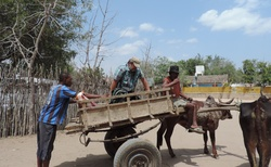 Ifaty - Villa Maroloko - vystupování ze zebu taxi