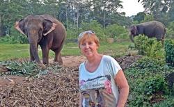 Sloní útulky jsou po celém Thajsku, bohužel se k nim ne vždy chovají dobře