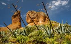 Kamenitovo-písečné útvary v Anaga parku