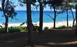 Část pláže ve Skale