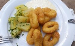Zámek Franzesburg - oběd
