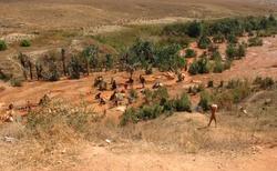 Ilakaka - těžba prodejna safírů