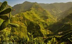 Zelené kaňony v krásném Anaga parku