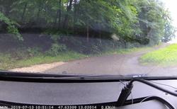 Liška na cestě