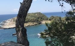 Modré moře a hodně zeleně